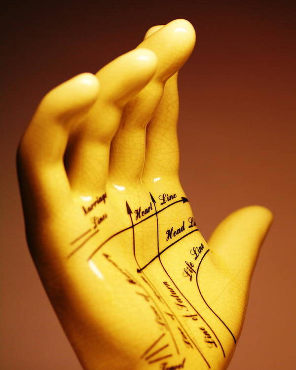 Predicting Poster featuring the photograph Palmistry by Pasieka