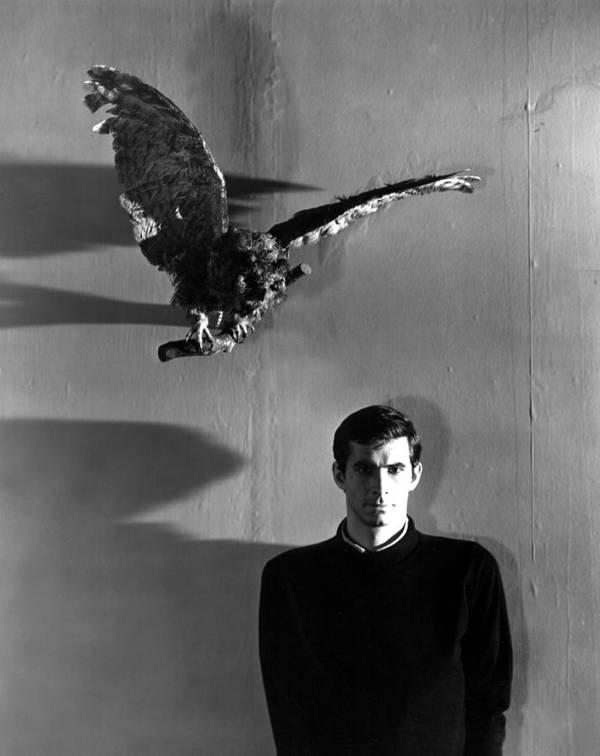 100greathorror Poster featuring the photograph Psycho, Anthony Perkins, 1960 by Everett