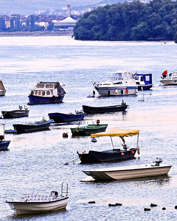 Boats Poster featuring the photograph River Boats On Danube by Elena Elisseeva