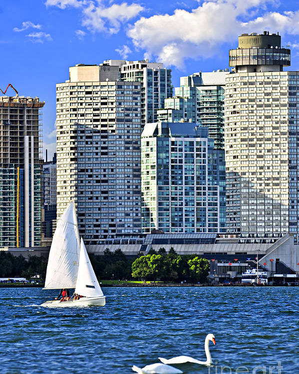 Toronto Poster featuring the photograph Sailing In Toronto Harbor by Elena Elisseeva