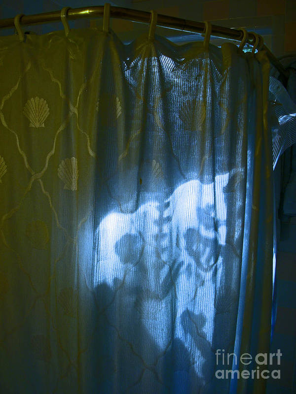 Shower Poster featuring the photograph Shower Shadows by Beebe Barksdale-Bruner