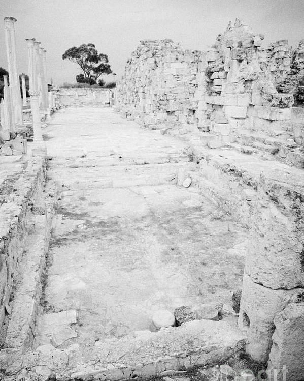 Famagusta Poster featuring the photograph Swimming Pools In The Gymnasium And Baths In The Ancient Site Of Old Roman Villa Salamis by Joe Fox
