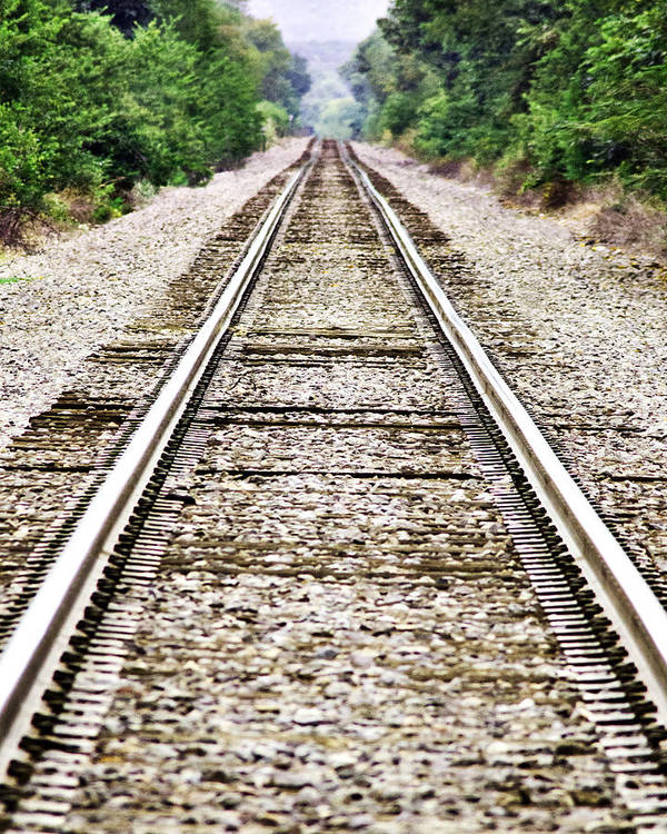 Train Poster featuring the photograph 1207-9507 Train Tracks At Knoxville by Randy Forrester