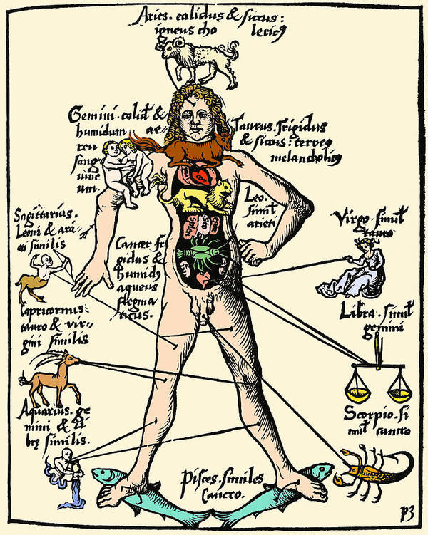 Macrocosm Poster featuring the photograph 16th-century Medical Astrology by Cordelia Molloy
