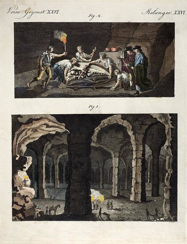 18th Century Poster featuring the photograph 1770 Maastricht Mosasaur Discovery by Paul D Stewart