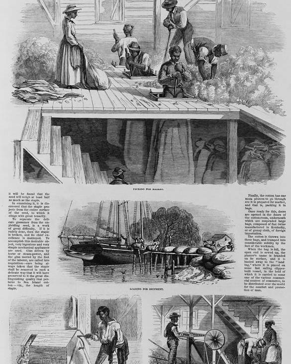 History Poster featuring the photograph 1869 Illustration Show Ex-slaves, Now by Everett