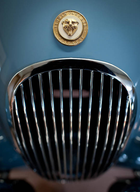 1952 Jaguar Xk120 Mark Vii Roadster Poster featuring the photograph 1952 Jaguar Hood Ornament And Grille by Sebastian Musial