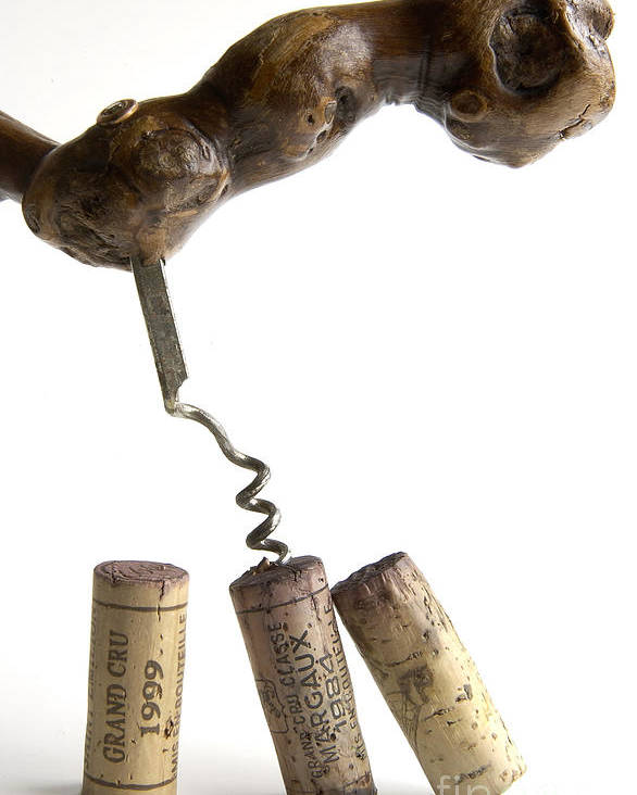 Cork Poster featuring the photograph Corks Of French Wine. by Bernard Jaubert