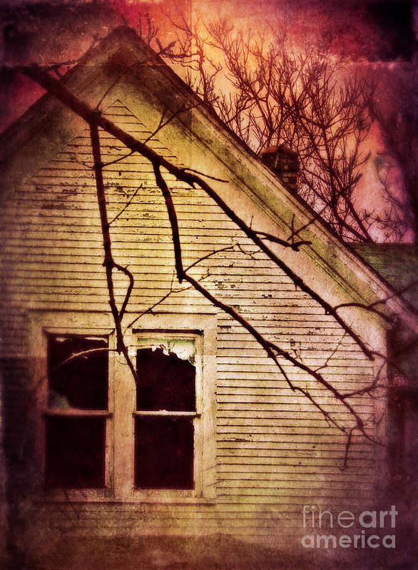 House Poster featuring the photograph Creepy Abandoned House by Jill Battaglia