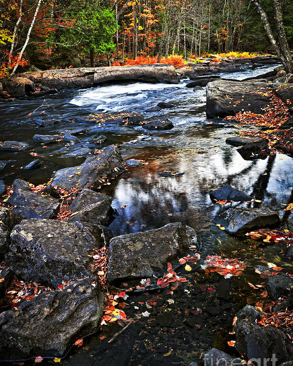 Autumn Poster featuring the photograph Fall Forest And River Landscape by Elena Elisseeva
