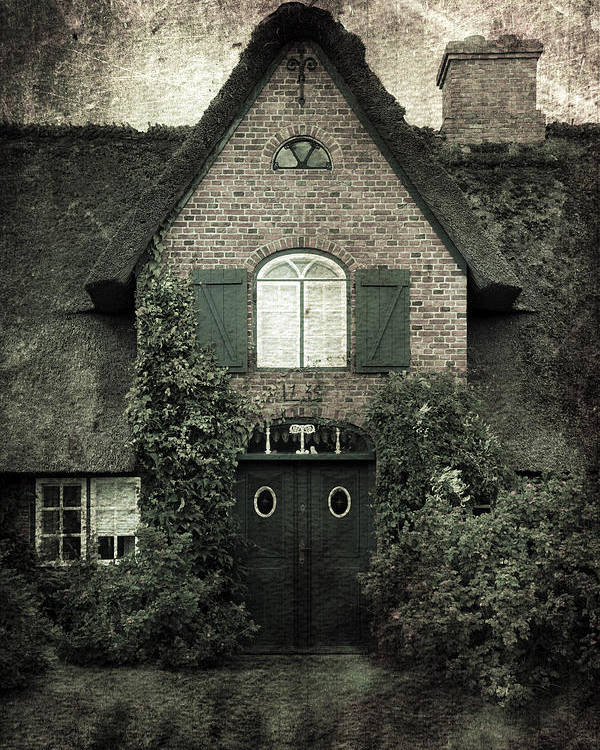 House Poster featuring the photograph Thatch by Joana Kruse