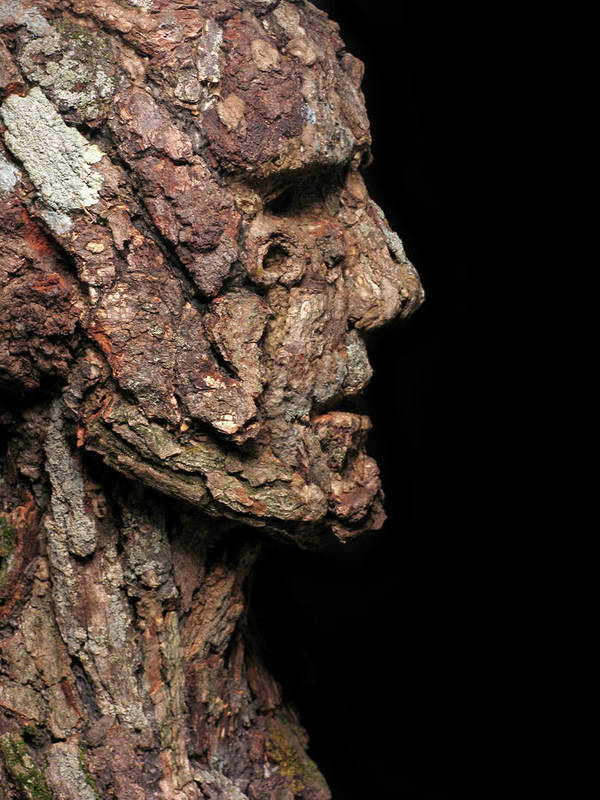 Groot Poster featuring the mixed media Revered A Natural Portrait Bust Sculpture By Adam Long by Adam Long