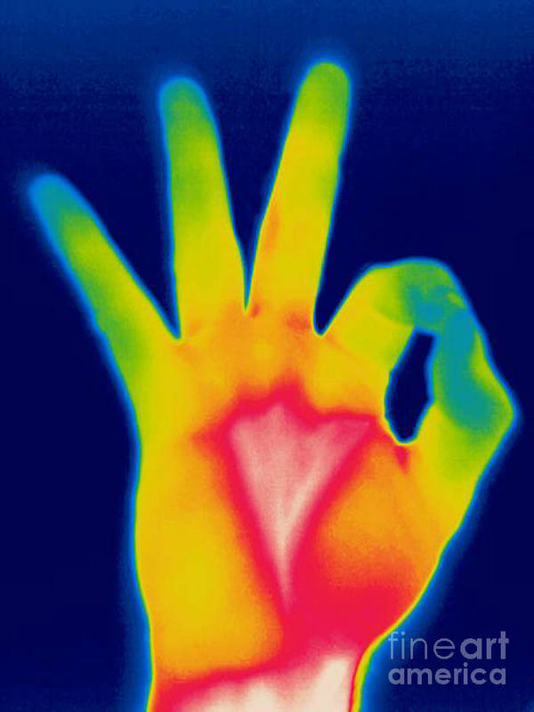 Thermogram Poster featuring the photograph A Thermogram Of A Hand Giving The Ok by Ted Kinsman
