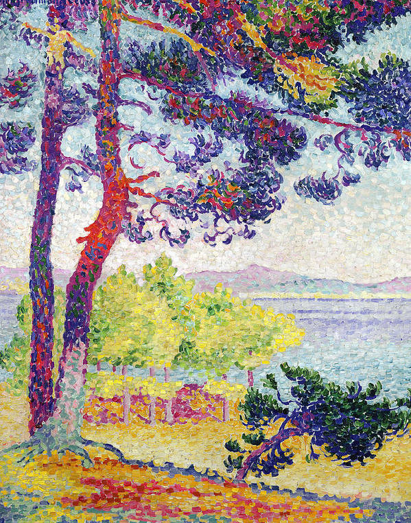 Afternoon At Pardigon Poster featuring the painting Afternoon At Pardigon by Henri-Edmond Cross