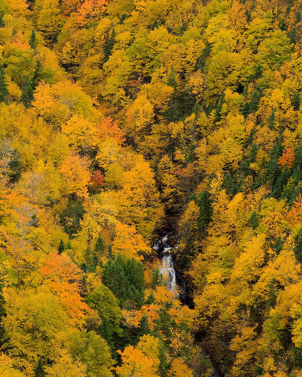 Aerial Image Poster featuring the photograph Autumn Colour And Waterfalls, Cape by John Sylvester