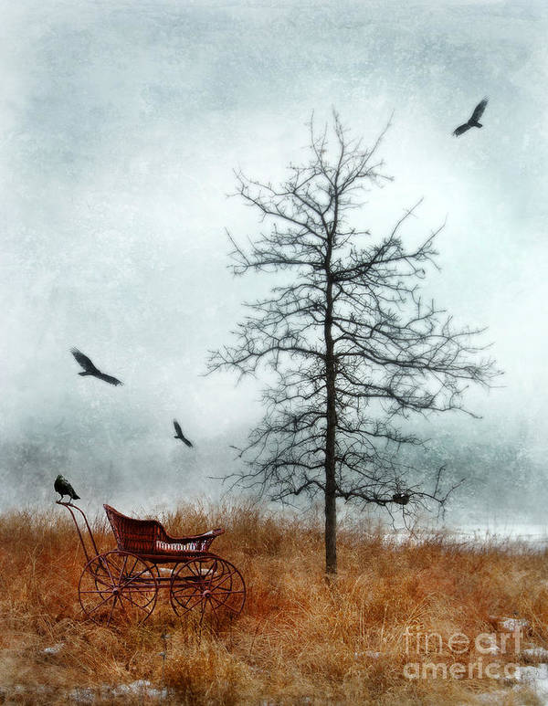 Buggy Poster featuring the photograph Baby Buggy By Tree With Nest And Birds by Jill Battaglia