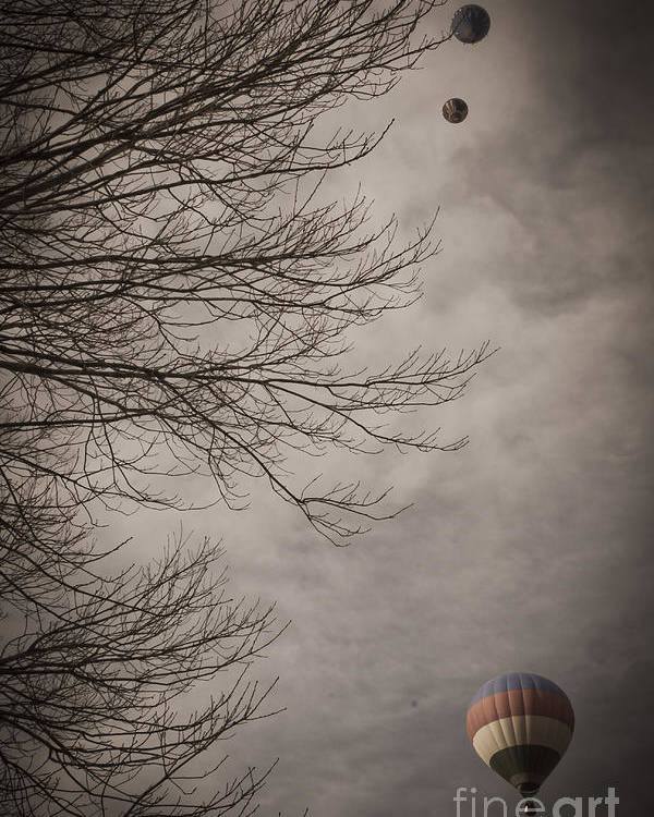 Hot Air Balloons Poster featuring the mixed media Balloons In The Pines by Kim Henderson