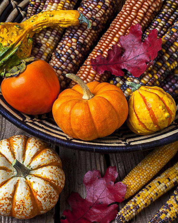 Gourd Poster featuring the photograph Basketful Of Autumn by Garry Gay