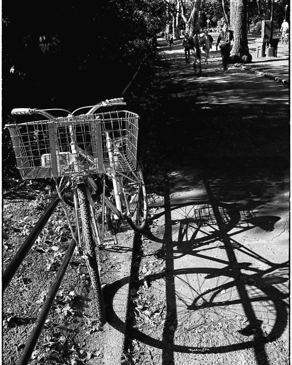 Bike Poster featuring the photograph Bicycle Shadow 2 by Madeline Ellis