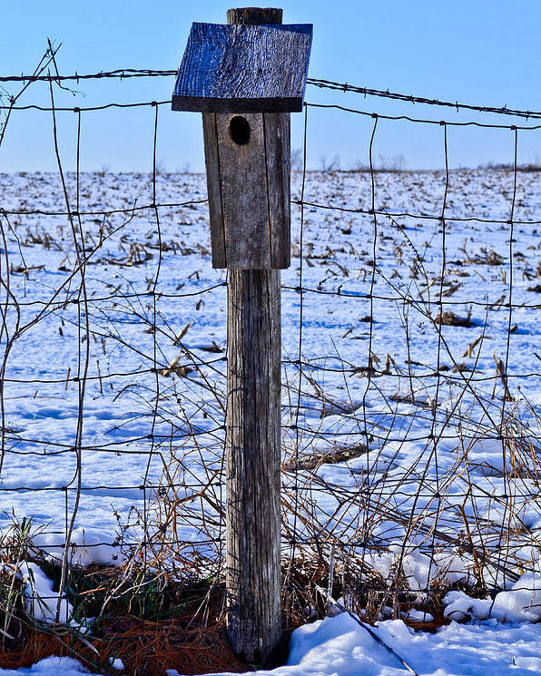 Birdhouse Poster featuring the photograph Birdhouse In The Snow by Julio n Brenda JnB