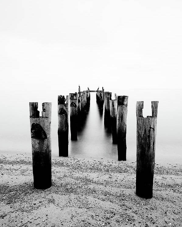 Vertical Poster featuring the photograph Birds Resting On A Derelict Pier by Scott Masterton
