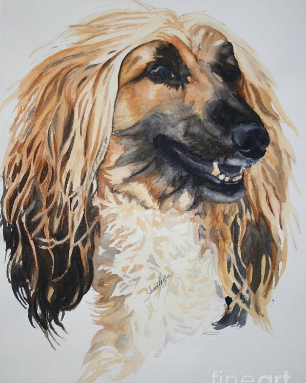 Afghan Hound Poster featuring the painting Blonde by Susan Herber