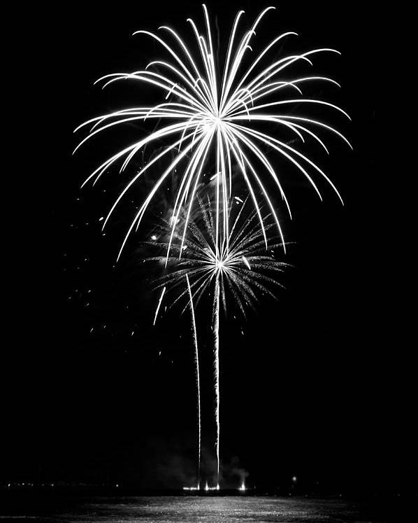 Fireworks Poster featuring the photograph Blooming In Black And White by Bill Pevlor