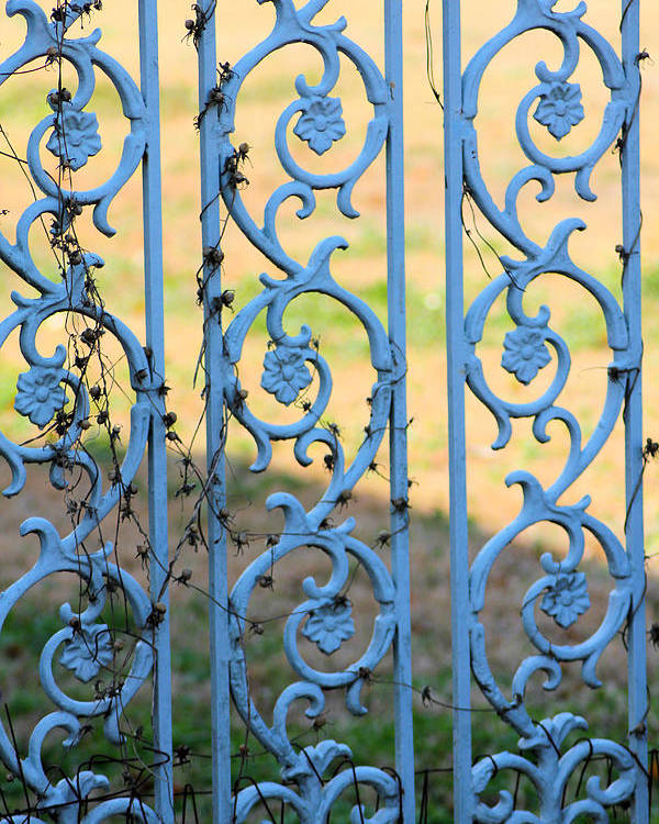 Blue Poster featuring the photograph Blue Gate Swirls by Karen Wagner