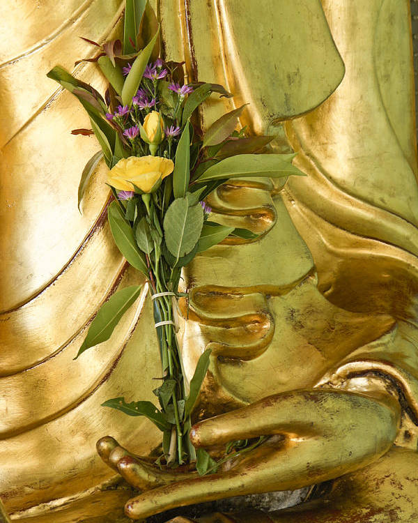 Buddha Poster featuring the photograph Buddha Hand Holding Flower by Michele Burgess