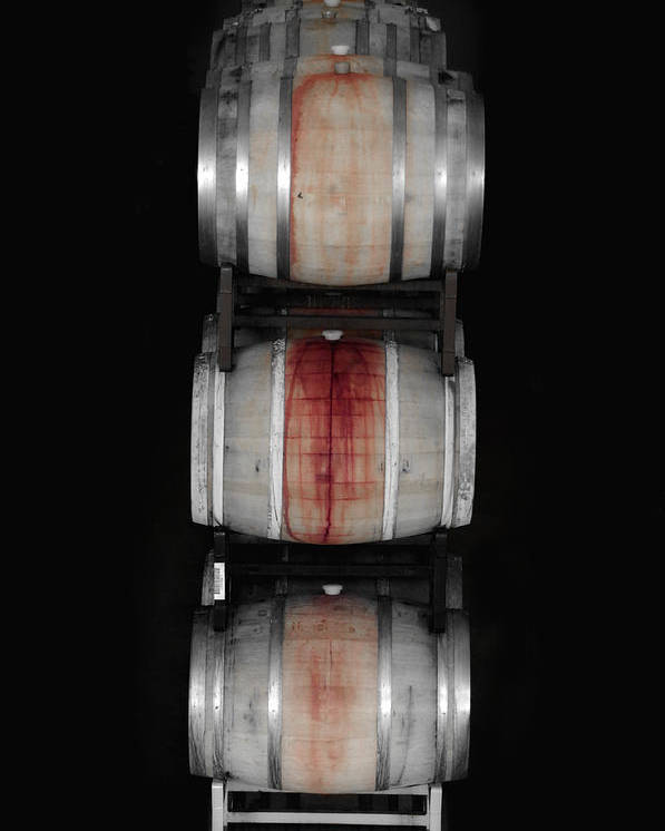 Barrel Poster featuring the photograph Cabernet by Donna Blackhall