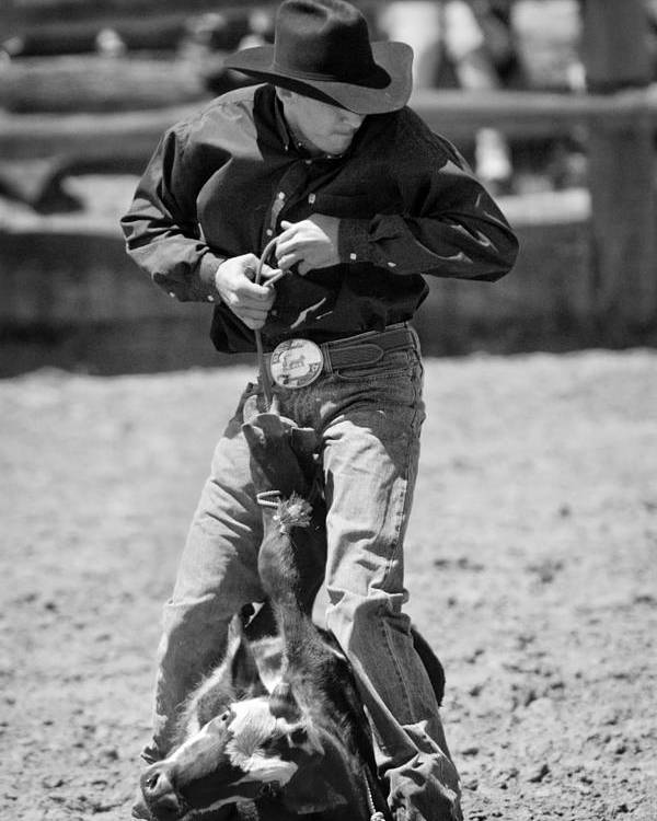 Rodeos Poster featuring the photograph Calf Roper by Michelle Wrighton