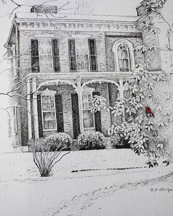 Historic Home Poster featuring the drawing Cardinal by Patsy Sharpe