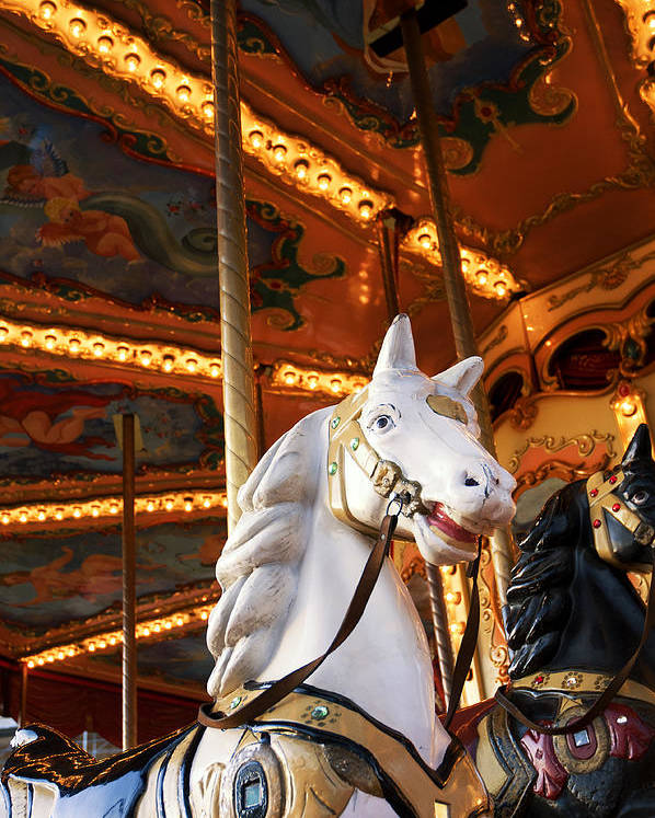 Detail Poster featuring the photograph Carousel Horse by Fabrizio Troiani