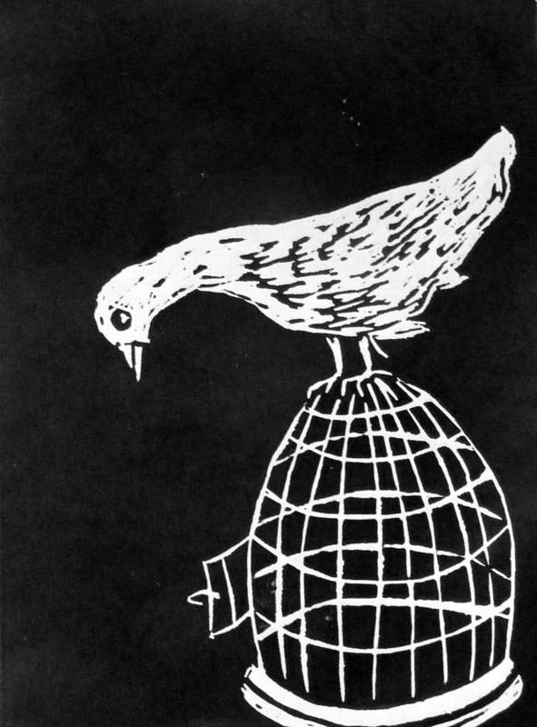 Bird Poster featuring the mixed media Choice by Roselyne Williams