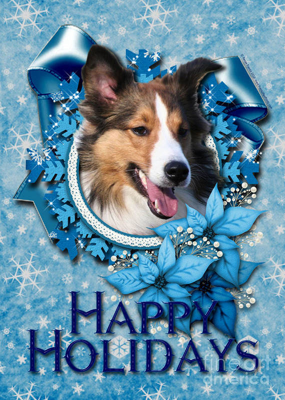 Sheltie Poster featuring the digital art Christmas - Blue Snowflakes Sheltie by Renae Crevalle