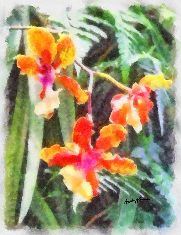 Flowers Poster featuring the painting Chromaticorchids by Anthony Caruso