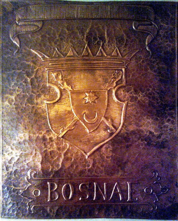 Bosnae Poster featuring the relief Coat Of Arms Bosnia by Mak Art