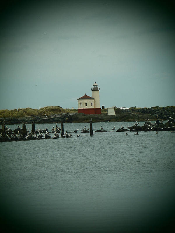Coquille River Poster featuring the photograph Couquille River Lighthouse by Tony and Kristi Middleton