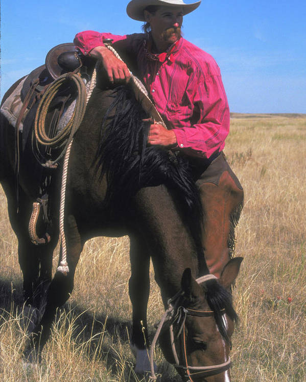 Cowboy Poster featuring the photograph Cowboy In South Dakota by Carl Purcell