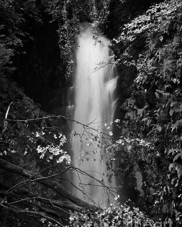 Waterfall Poster featuring the photograph Cranny Falls Waterfall Carnlough County Antrim Northern Ireland Uk by Joe Fox