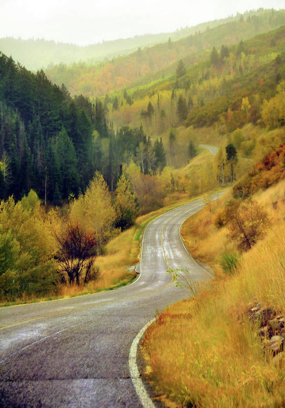 Vertical Poster featuring the photograph Curve Mountain Road With Autumn Trees by Utah-based Photographer Ryan Houston