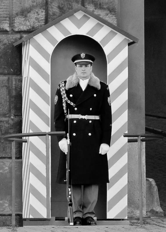 Honor Poster featuring the photograph Czech Soldier On Guard At Prague Castle by Christine Till