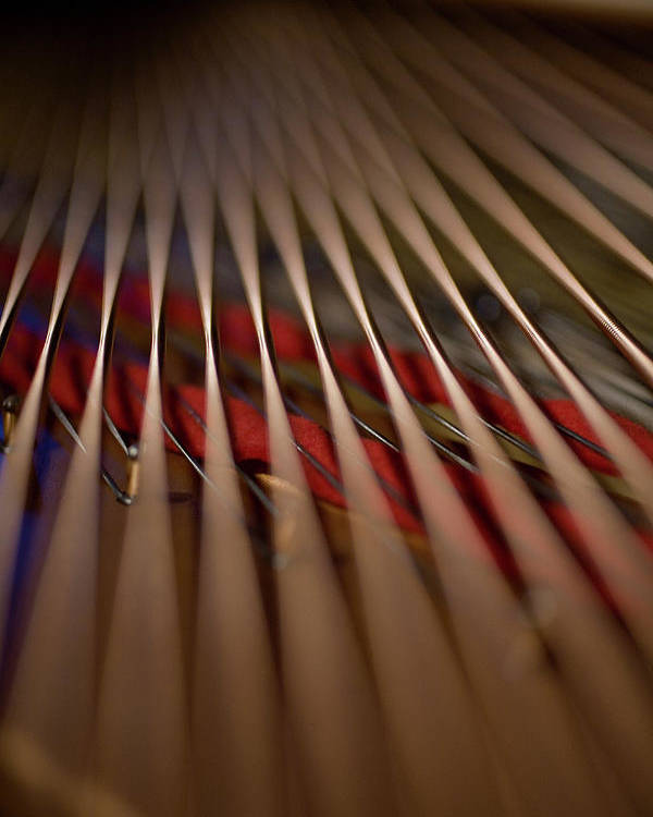 Vertical Poster featuring the photograph Detail Of Piano Strings by Christopher Kontoes