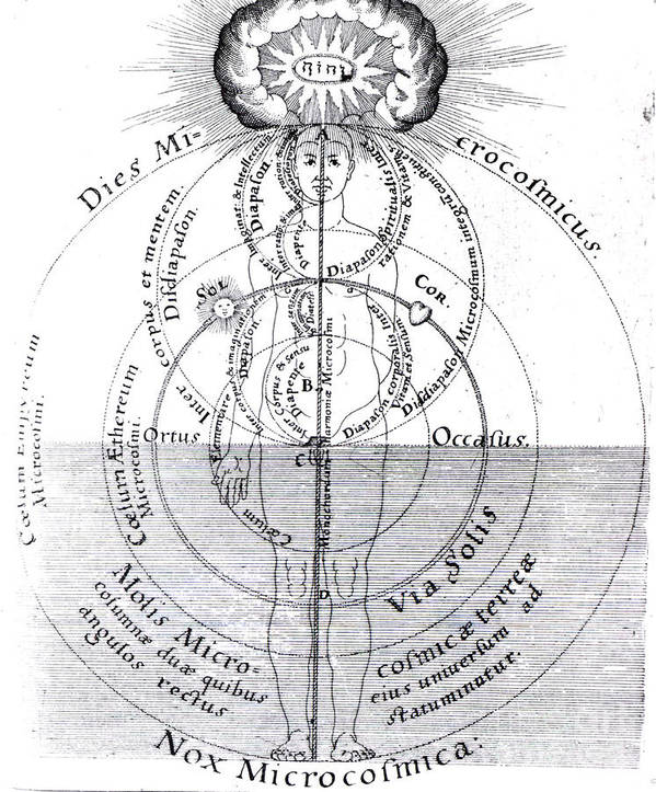 History Poster featuring the photograph Dies Microcosmicus, Nox Microcosmica by Science Source
