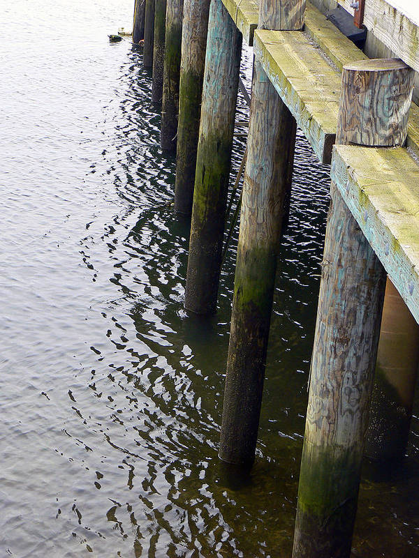 Dock Poster featuring the photograph Dock Of The Bay by Pamela Patch