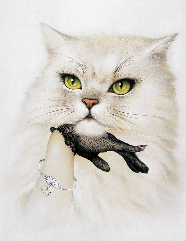 Felis Catus Poster featuring the photograph Domestic Cat, Conceptual Image by Smetek