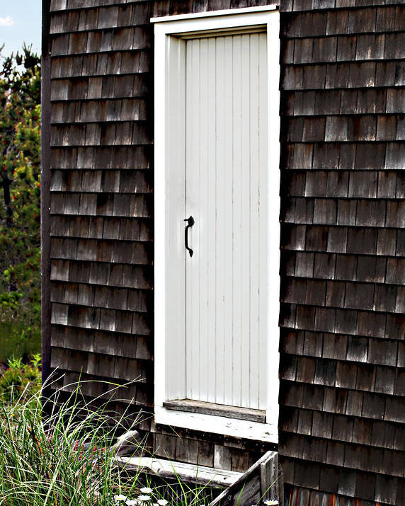 Digital Art Poster featuring the photograph Doorway With Daisies by Michelle Wiarda