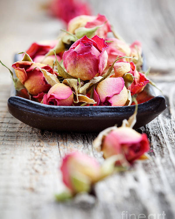 Aroma Poster featuring the photograph Dried Rose Buds by Kati Finell