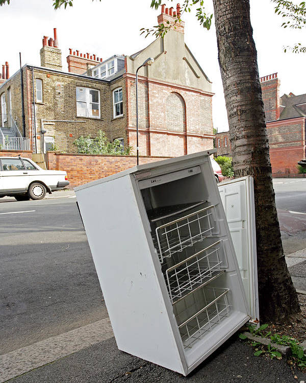 Appliance Poster featuring the photograph Dumped Refrigerator by Carlos Dominguez