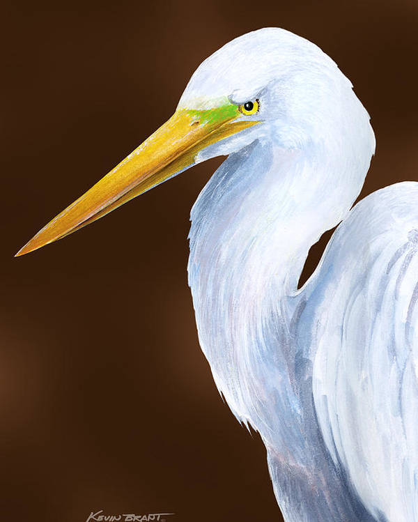 Egret Poster featuring the painting Egret Head Study by Kevin Brant